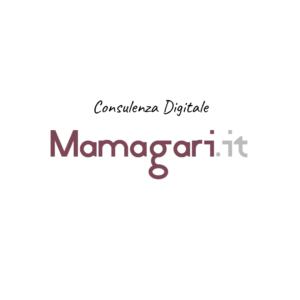 Consulenza Digitale Padova Rovigo Vicenza Venezia Verona. Consulenza per eCommerce siti aziendali